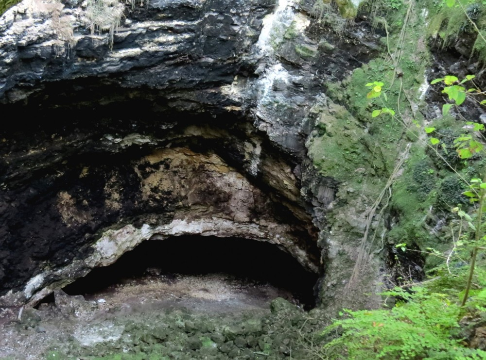 IMG_1179 bat cave