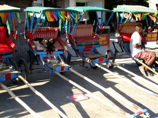 IMG_0715 rickshawss