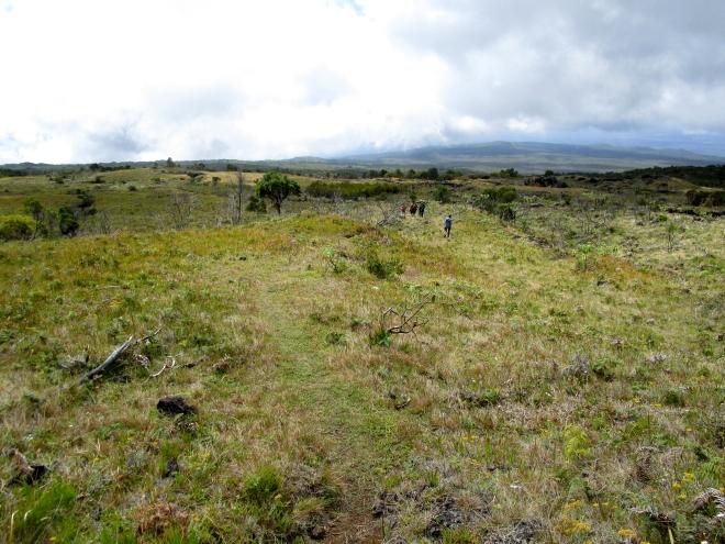 IMG_0859 Mt Kathala
