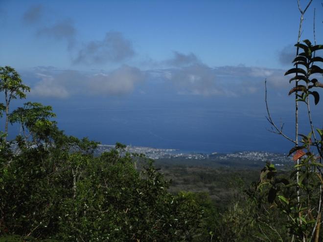 IMG_0866 view of coast
