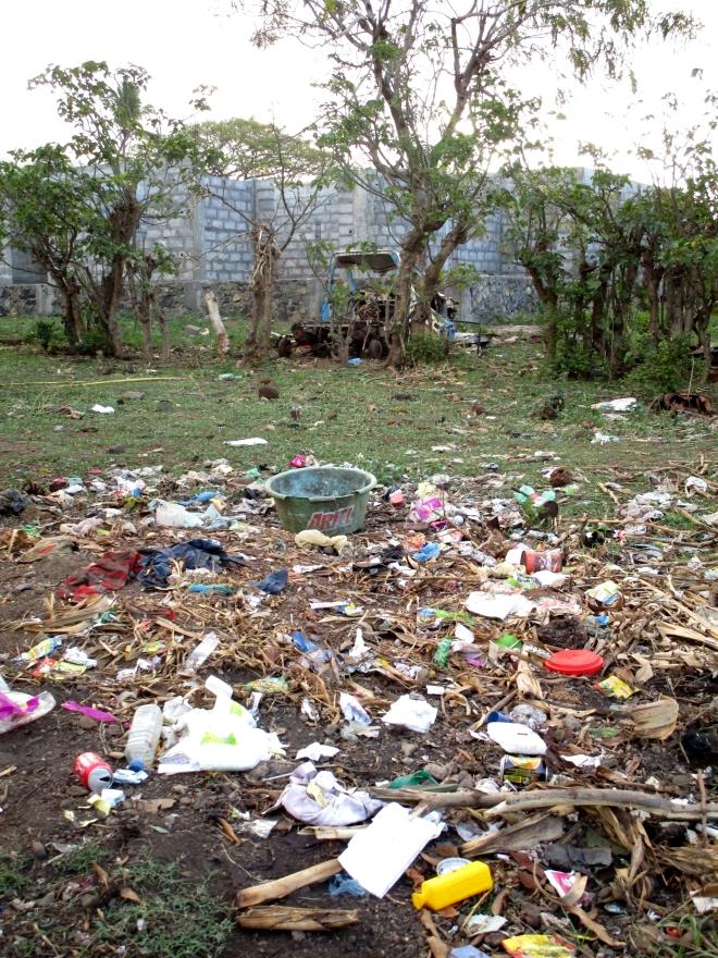 IMG_0915 Moheli rubbish