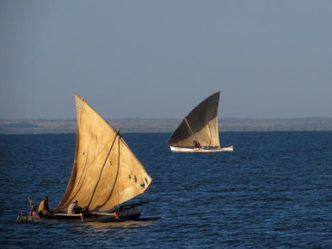 IMG_1055 sailboats