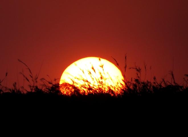 IMG_1281 sunset