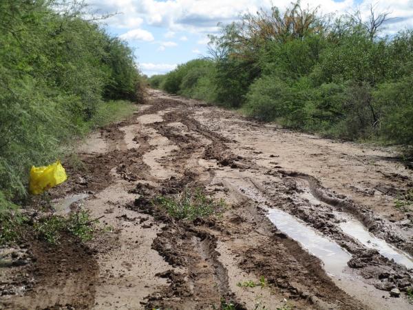 IMG_1120 muddy track