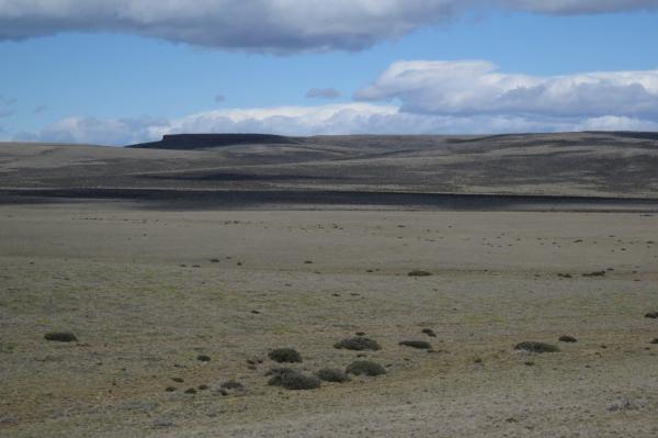 IMG_3665 plateau