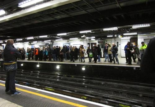 IMG_1501 the Tube