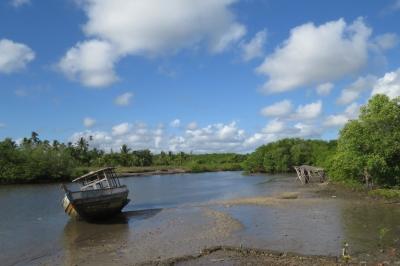 IMG_0942 mangrove creek