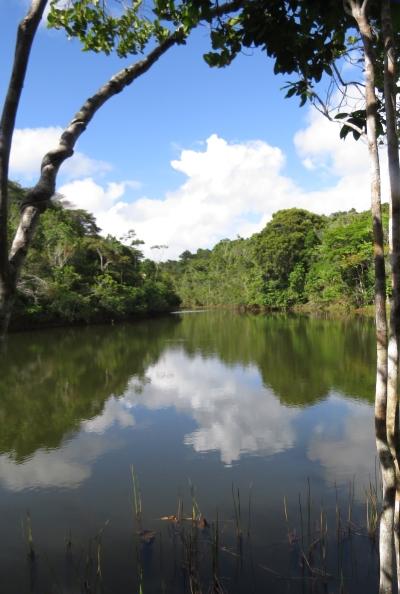 IMG_2484 lake