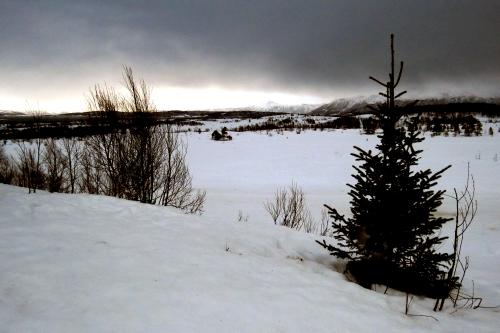 IMG_2644 nr Tromso