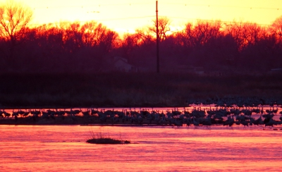 IMG_3580 sunset at Platte River