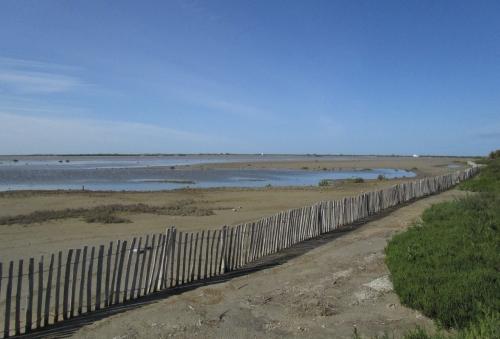 IMG_6038 The Camargue salt lagoons