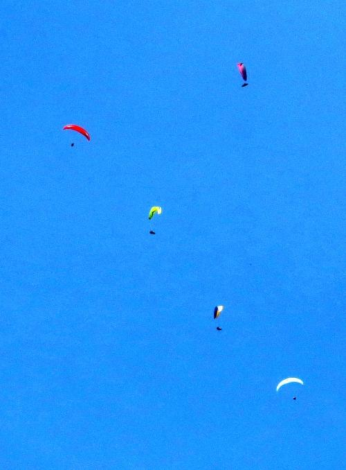 IMG_7614 Hang-gliders
