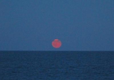 IMG_6311 Moon rise