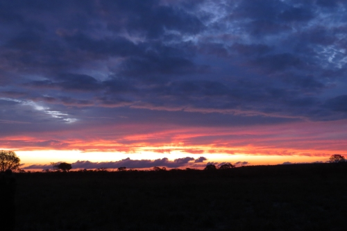 IMG_0537 sunset