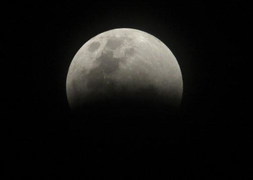 IMG_0551 eclipse