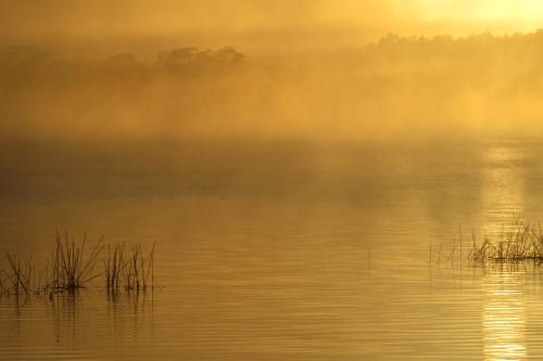 IMG_0585 dawn Laguna Blanca