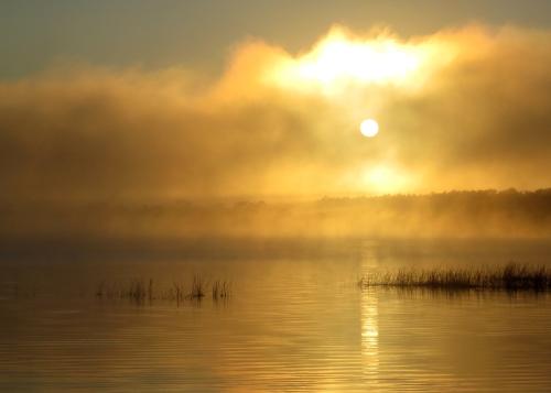 IMG_0588 dawn Laguna Blanca