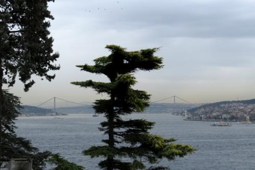 IMG_1421 Bosphorus