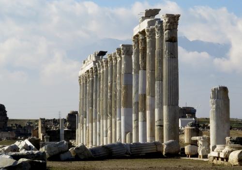 IMG_1826 Laodicea