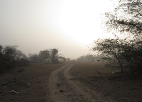 IMG_2384 Bikiner fog