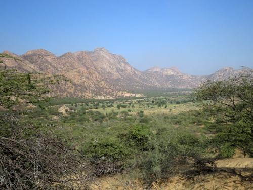 IMG_3114 near Siana