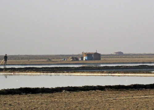 IMG_3345 salt pans Little Rann of Kutch