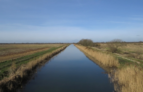 IMG_4014 Wicken Fen