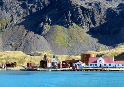 IMG_5118 Grytviken