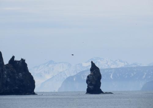 IMG_5162 Avacha Bay
