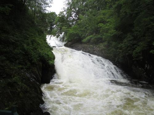 IMG_4797 Swallow Falls
