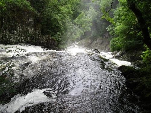 IMG_4801 Swallow Falls